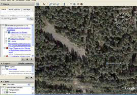 Bosque visto con Google earth